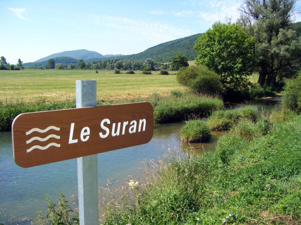 Le Suran (panneau)